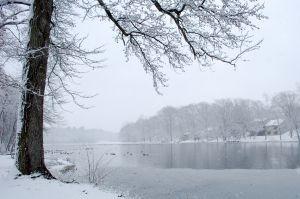Top Winterizing Tips